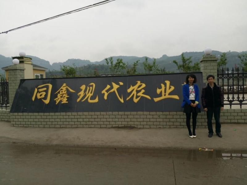 重庆三峡学院1