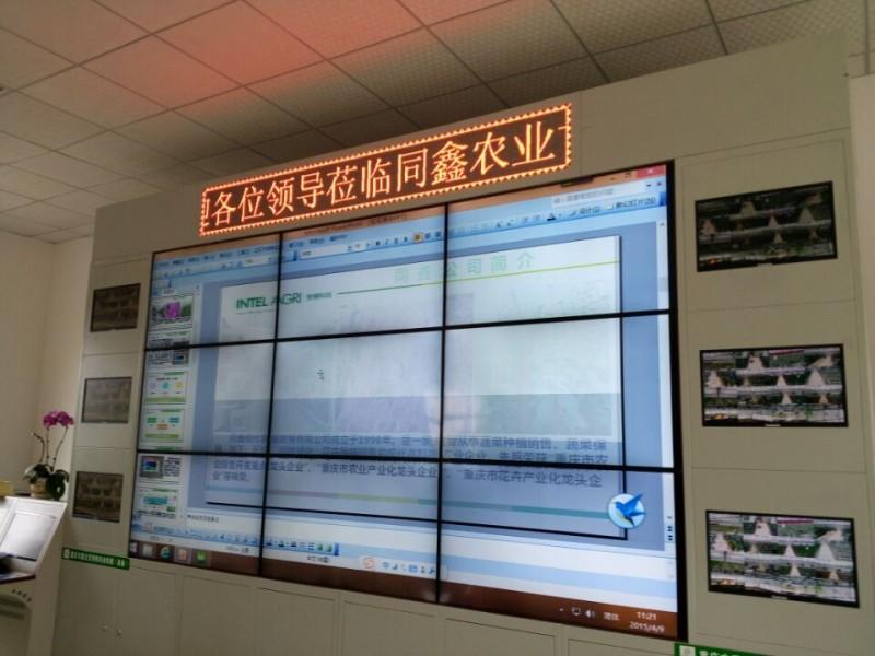 重庆三峡学院4
