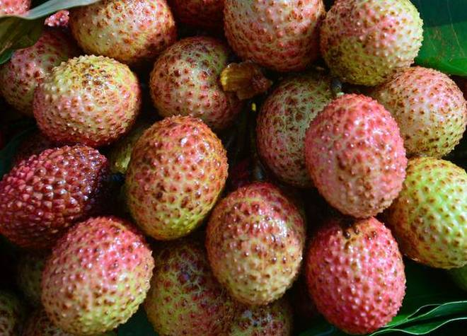 LICHI_HOT_WEATHER