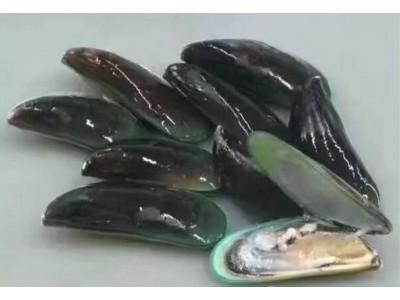 受海洋赤潮影响 福建漳浦36人疑食用青蛤中毒