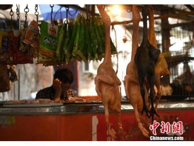 中国内地7天报告H7N9病例10例 疫情平稳