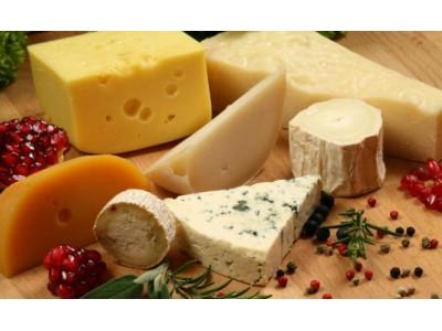百嘉奶酪计划融资1.6亿澳元 紧抓下阶段增长机遇