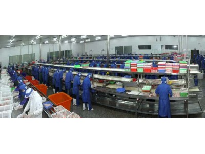 美国FDA对我国一家企业的菠菜粉实施自动扣留
