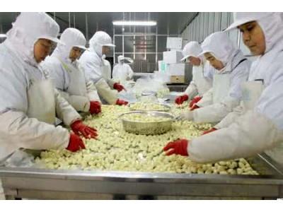 注意啦!六月份我国19批次食品违反日本食品卫生法
