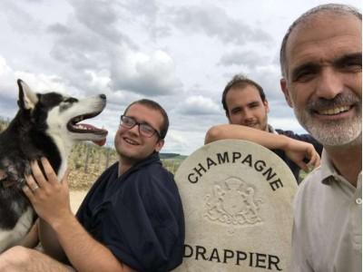 德拉皮尔香槟购下新葡萄园以抵消霜冻造成的损失