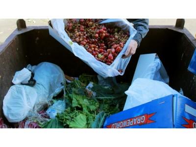 澳大利亚墨尔本食物浪费量惊人
