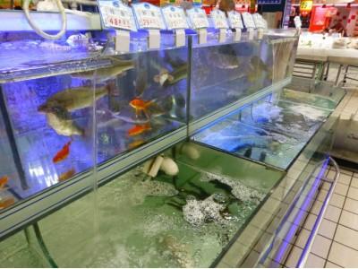 食药监抽检 孔雀石绿再现北京部分海鲜市场