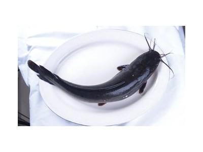 四川永辉超市鸡、鱼检出兽药残留超标