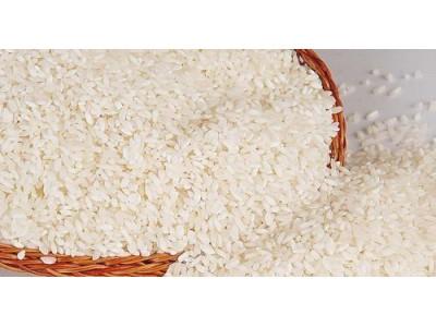 谈判了十多年 美国终于可以向中国出口大米了