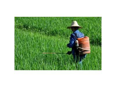 农业部:农药管理条例等配套规章8月1日起施行
