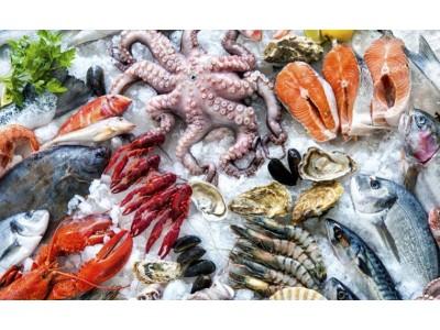 95%澳洲家庭经常性采购海鲜 活鲜冷藏销量最佳