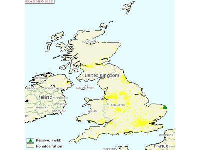 英国发生野禽H5N8高致病性禽流感疫情