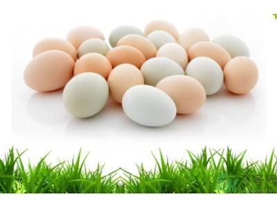 你爱的土鸡蛋检出兽药,陕西这些食品不合格上黑榜!