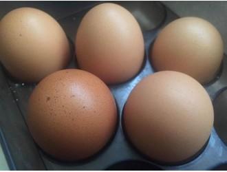台湾彰化验出芬普尼毒蛋 超过欧盟标准30倍