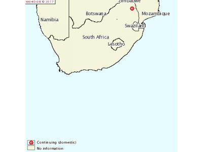 南非发生牛口蹄疫疫情