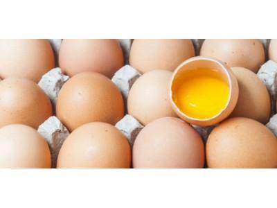 """鸡蛋价格暴跌暴涨 """"催泪蛋""""变身""""火箭蛋"""""""