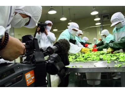 2017年9月输日食品违反日本食品卫生法情况(9月27日更新)