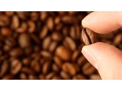 """消失一年多的""""星巴克网店""""又出现了,这种代购咖啡你敢喝吗?"""
