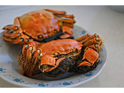 台湾销往香港大闸蟹 被验出戴奥辛超标