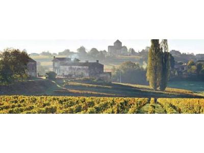 波尔多2017葡萄酒产量下降43% 仅330万百升