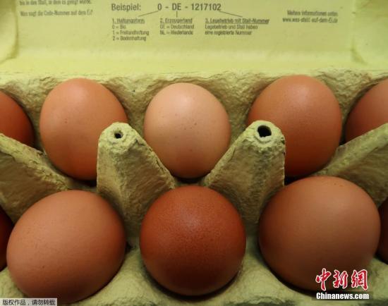 """受节日与""""毒鸡蛋""""影响 欧盟鸡蛋价格普遍上涨"""