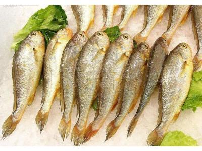 四川这6批次食用农产品兽药残留超标,涉及冰鲜黄鱼、乌骨鸡鸡肉等
