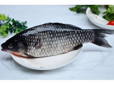 浙江发布2017年第26期抽检信息,鲫鱼、乌鸡等8批次食品被通报