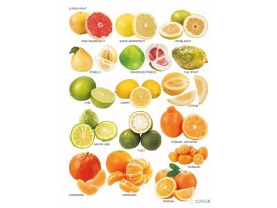 红心柚子更有营养?柚子皮能抗癌?