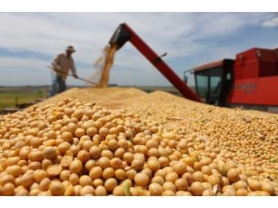中美贸易摩擦丨美公布拟加税清单,中国何时使出杀手锏大豆?