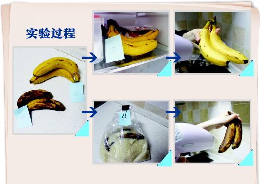 未熟透和熟透的两种香蕉