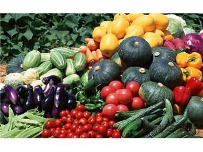 有机蔬菜公司造假贴标 央视记者深夜调查发现内情