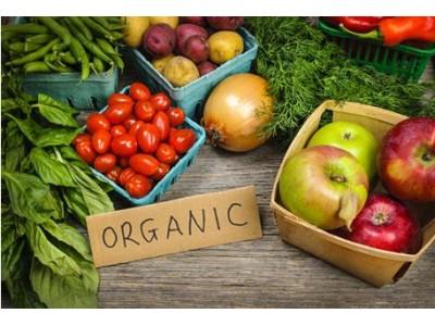 强化有机食品认证机构法律责任