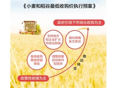 相关单位负责人解读最低收购价执行预案 今年小麦和稻谷怎么收?