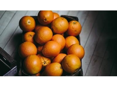 """橙汁现黑点、监控不到位、代理商反水:""""天使之橙""""怎么了?"""