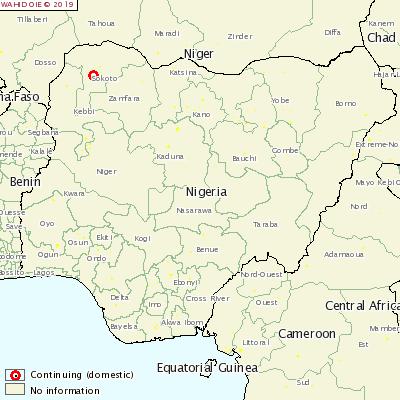 尼日利亚发生马甲型流感疫情