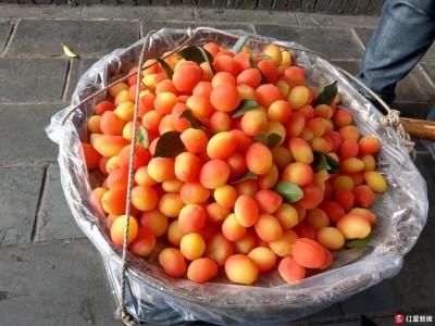 问民生·网红金西梅 专家:非新鲜水果建议谨慎食用
