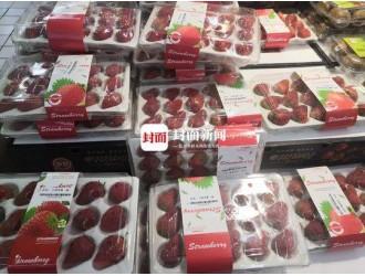 """市民买盒装草莓遭遇""""美丽陷阱"""":部分草莓变质 腐烂长毛"""