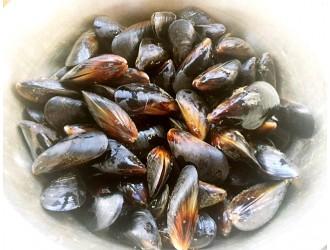 河北省市场监管局发布关于海虹的食品安全预警与提示