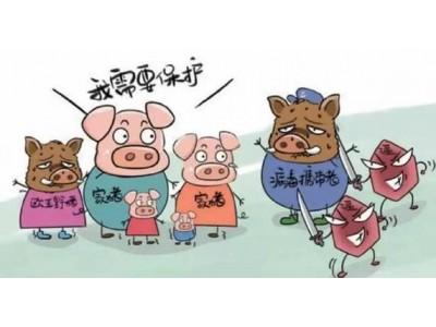 朝鲜发生非洲猪瘟疫情