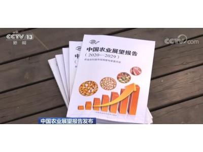 《中国农业展瞧报告(2020—2029)》发布 未来十年彩票平台国主粮保供能力大幅提升