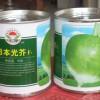 """厂家供应进口杂交优质芥菜种子""""日本光芥"""""""