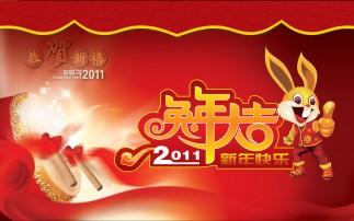 春节: (1)年
