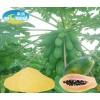 木瓜粉(天然木瓜粉、速溶粉、纯木瓜粉)