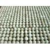 供应绿壳蛋鸡种蛋