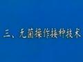 无菌操作接种技术 (3387播放)