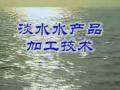 淡水鱼类的加工技术 (126播放)