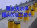 薄皮类水果罐头的加工技术 (288播放)