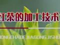 红茶的加工技术 (190播放)