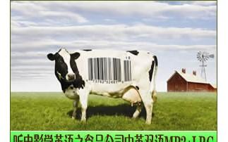 听电影学英语之食品公司:影片简介
