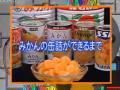 科学技术17 橘子罐头的制作 (144播放)